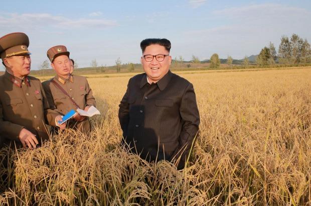 Kim Jong Un Countryside News Asia Today