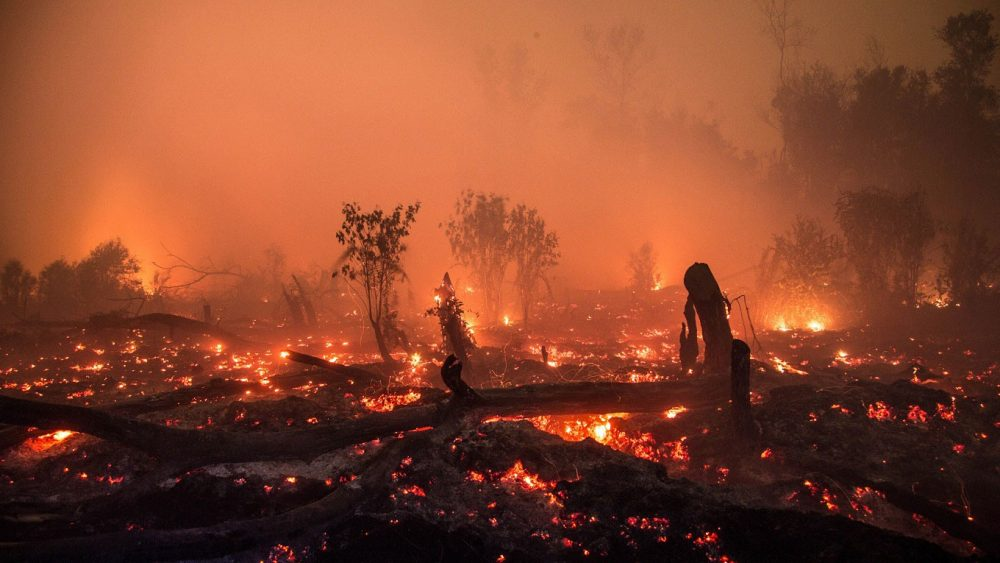 Indonesia Forest Fires Haze Malaysia Singapore News Asia Today