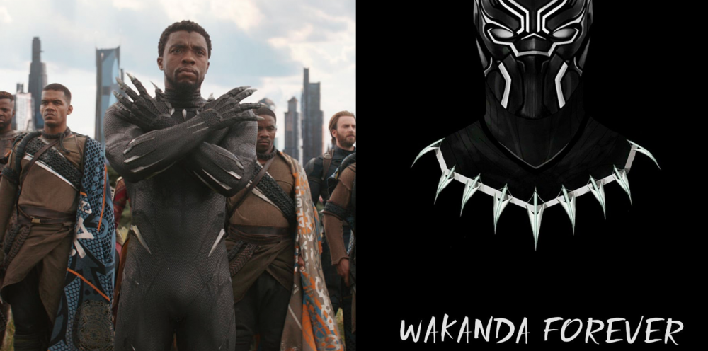 No more Wakanda, Black Panther's actor Chadwick Boseman dies aged 43 97