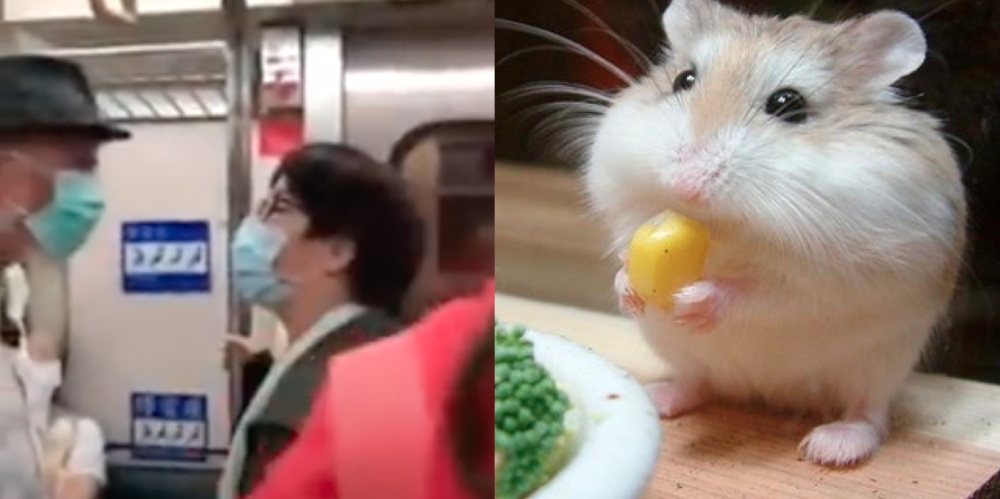 Woman places pet hamster on train's priority seat; gets into fight with old man. 25
