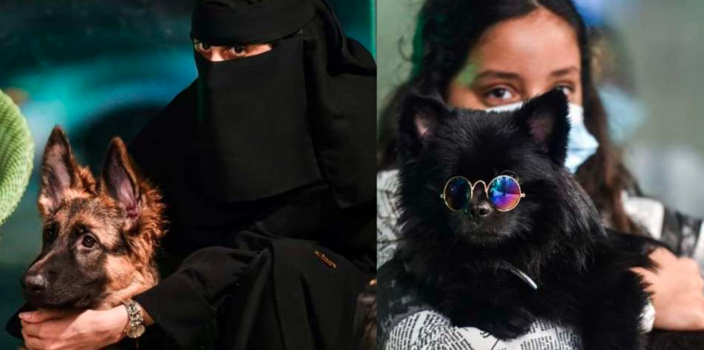 Saudi Arabia has its first dog cafe 85