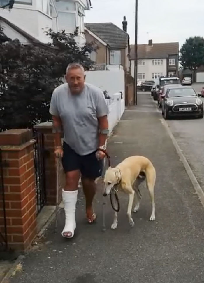 Owner's leg injured; his dog copies him out of sympathy 62