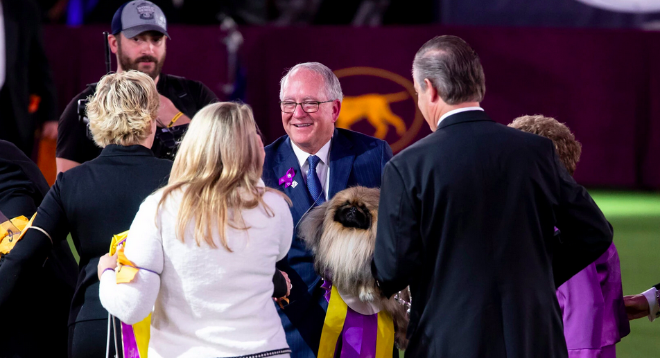 Meet Wasabi, the gorgeous Pekingese who wins Best in Show at Westminster 2021 64