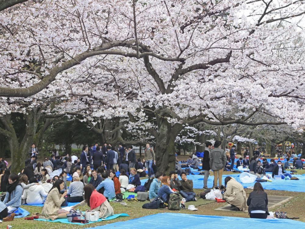 Tokyo wants to transform Olympics viewing venue to mass-vaccination site 62
