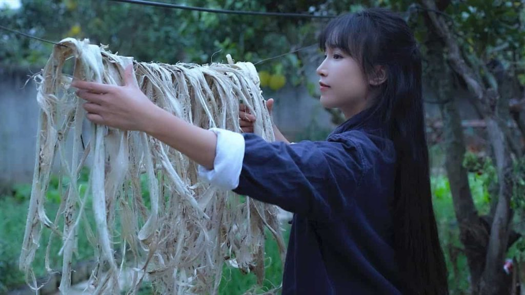Rural content is hot on China's TikTok; farmers making millions of revenues 75